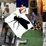 Il grattino della mosca. Brevi storie da leggere in metro o seduti sul wc